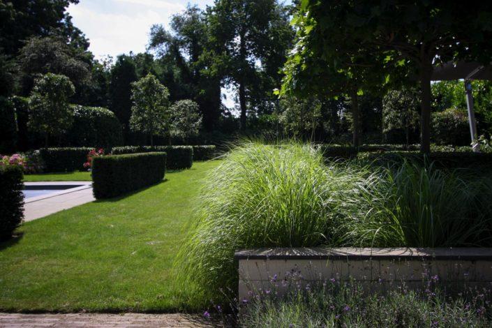landelijk strakke tuin gras