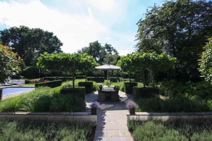 landelijk strakke tuin lavendel