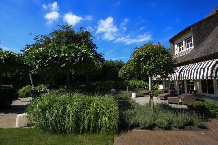 landelijk strakke tuin plataan